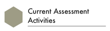 current assessment activities title for framework