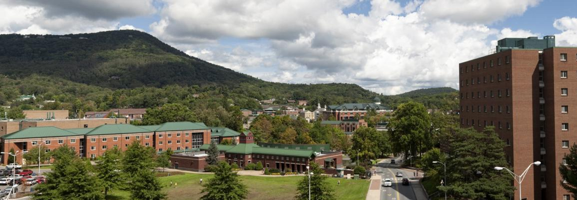 Summer campus panorama